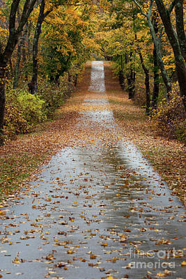 Photograph - Fall On The Bike Path by Butch Lombardi