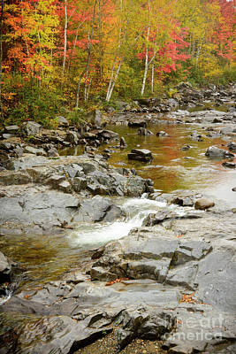 Photograph - Fall On The Carrabassett River by Alana Ranney