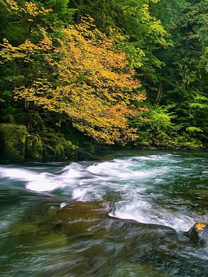 Fall On The Clackamas River, Or Art Print