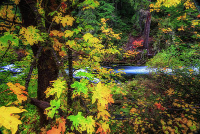 Photograph - Fall On The Deschutes by Cat Connor