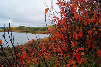 Photograph - Fall On The Lake by Broderick Delaney