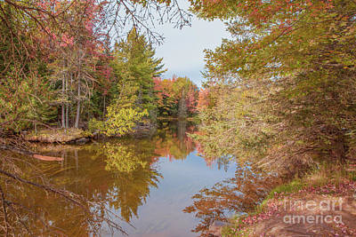 Nikki Vig Royalty-Free and Rights-Managed Images - Fall on the Ontonagon River Michigan by Nikki Vig