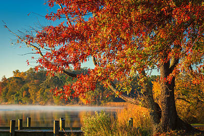 Photograph - Fall On The Patuxent by Cindy Lark Hartman