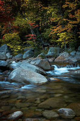 Photograph - Fall On The Saco River, New Hampshire by Tim Bryan