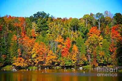 Fall On The Water Print by Robert Pearson