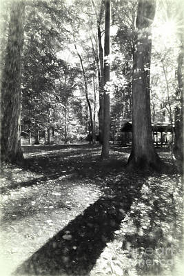 Photograph - Fall Picnic Bw Painted by Judy Wolinsky