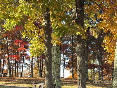 Photograph - Fall Picnic by Loretta Pokorny
