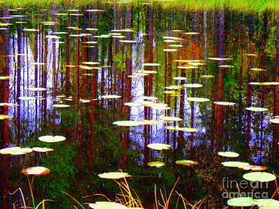 Photograph - Fall Pond by Pauli Hyvonen