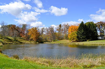 Fall Pond Art Print by Penny Neimiller