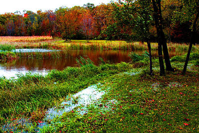 Photograph - Fall  Pond by William Meemken