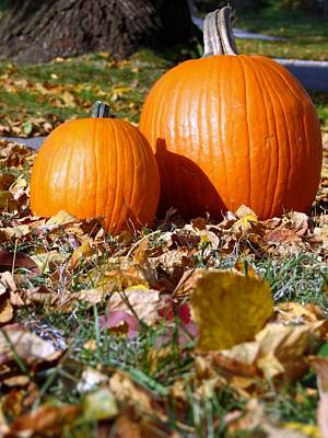 Photograph - Fall Pumpkins by Kyle West