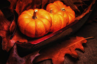 Oak Leaf Photograph - Fall Pumpkins Still Life by Tom Mc Nemar