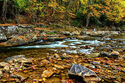 Photograph - Fall Rain Along Williams River by Thomas R Fletcher