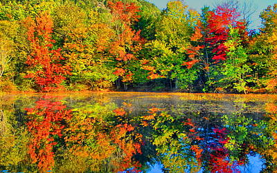 Photograph - Fall Reflected  by Emily Stauring