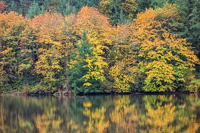 Photograph - Fall Reflected In Silverton Lake by Loree Johnson