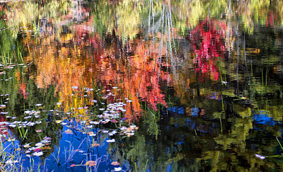 Photograph - Fall Reflection  by Betty  Pauwels