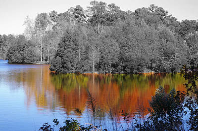 Fall Reflection Art Print by Don Prioleau