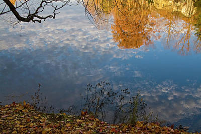 Photograph - Fall Reflection In Blue by Brian Green