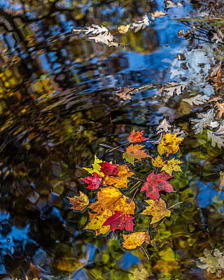 Fall Reflection - Pisgah National Forest Art Print