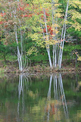 Photograph - Fall Reflections 1 by David Dunham
