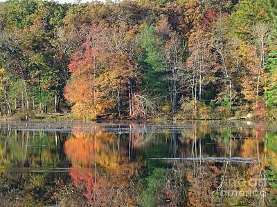 Michael Jackson - Laurel Lake Fall Reflections Three by Cindy Treger