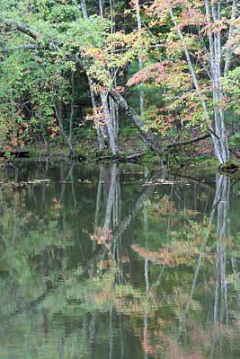 Photograph - Fall Reflections 4 by David Dunham