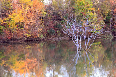 Ohio Photograph - Fall Reflections by Angela Murdock
