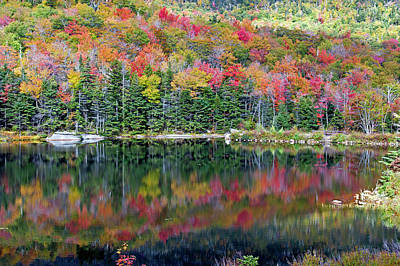 Photograph - Fall Reflections by David Freuthal