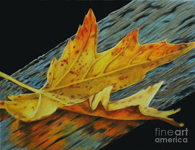 Painting - Fall Reflections by Jennifer Watson
