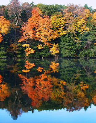 Photograph - Fall Reflections by Joel Gilgoff