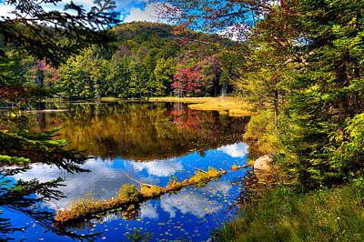 Reflection On Pond Photograph - Fall Reflections On Cary Lake by David Patterson