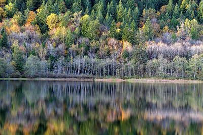 Harrison Hot Springs Wall Art - Photograph - Fall Reflections On Deer Lake by Michael Russell