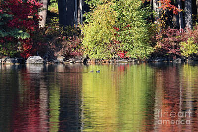 Photograph - Fall Reflections On Woodbury Pond, Maine by Sandra Huston