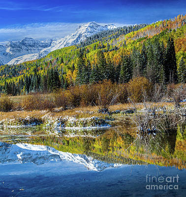 Photograph - Fall Reflections by Steven Reed