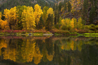 Fall Foliage Photograph - Fall Reflections by Thorsten Scheuermann