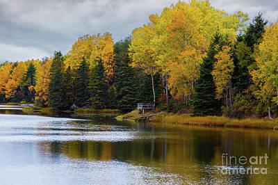 Photograph - Fall River In Prince Edward Island by Verena Matthew