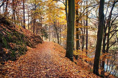 Fall Road Along The Lake Art Print
