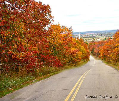 Photograph - Fall Road Trip by Brenda Redford
