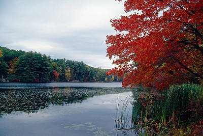 Fall Scenic Little Long Pond Harriman State Park New Art Print by George Oze