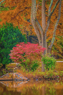 Photograph - Fall Season By The Pond by Bruce Pritchett