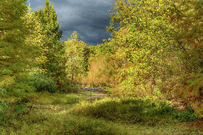Photograph - Fall Shaw Nature Reserve Photo Painting 7r2_dsc2644_10242017 by Greg Kluempers