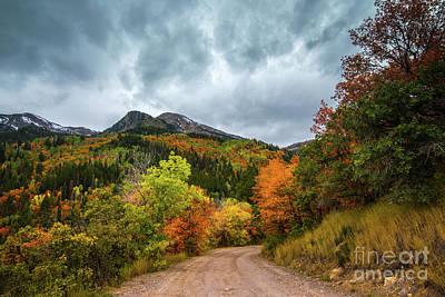 Photograph - Fall - Silver Lake Road - American Fork Canyon  by Gary Whitton
