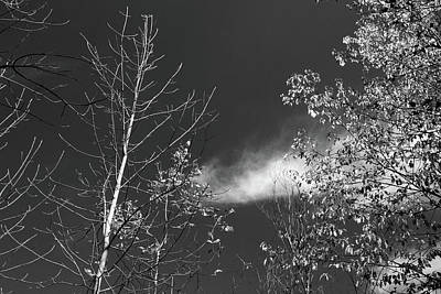 Photograph - Fall Sky 2017 Bw by Mary Bedy