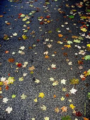 Photograph - Fall Sparkle by Deborah  Crew-Johnson