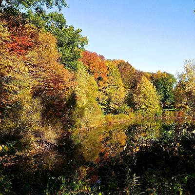 Photograph - Fall Splendor  by Suzanne McDonald
