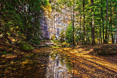 Photograph - Fall Stream by Daniel Houghton
