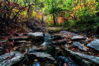 Photograph - Fall Stream by Steve ODonnell