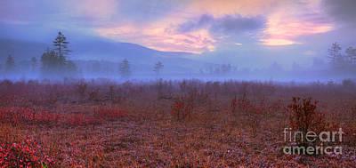 Fall Sunrise Cranberry Glades West Virginia I Art Print by Dan Carmichael