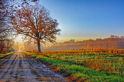 Photograph - Fall Sunrise In Fog Hdr by LeeAnn McLaneGoetz McLaneGoetzStudioLLCcom
