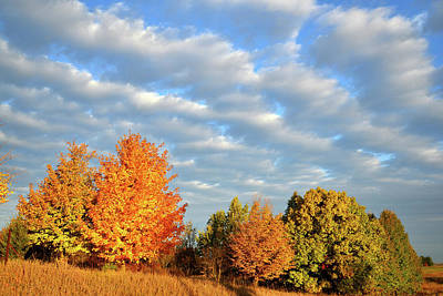Photograph - Fall Sunrise In Mchenry County by Ray Mathis
